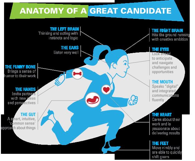 анатомия идеального кандидата
