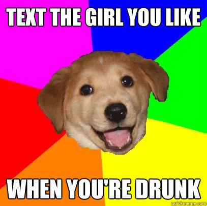 Собака-советчик