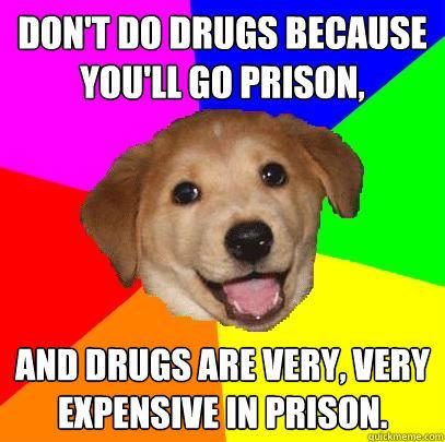 Собака-советчик мем