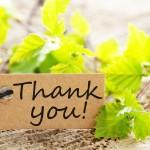 13 способов сказать спасибо на английском