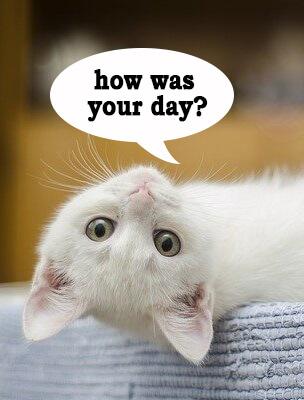 Отвечаем на вопросы «How was your (something)?» без затруднений