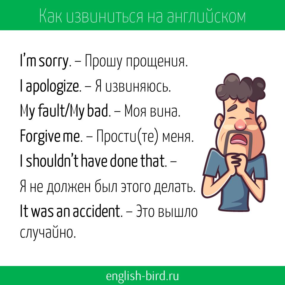 Как попросить прощения на английском языке