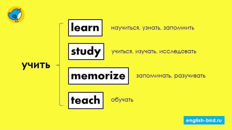 Разница между learn, teach, study и memorize